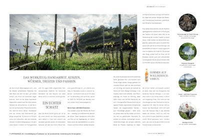 Teil 2 der Strecke über das Weingut Mournir